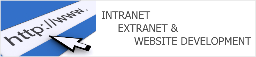 Intranet, Extranet, and Website Development
